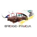 Bridge-Pamoja
